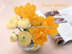 Mothers Day Flowers UK